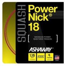 Besaitung mit Ashaway Powernick 18