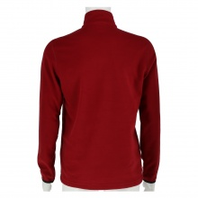 Champion Pullover Athletic Micro Polar Fleece 2017 rot Herren
