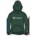 Champion Hoodie Big Logo Print (gefüttert) 2020 dunkelgrün Jungen