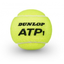 Dunlop Tennisbälle ATP Dose 2x4er inkl. Trinkflasche