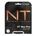Dunlop NT Max Plus schwarz Tennissaite