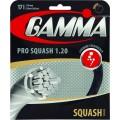 Gamma Live Wire Pro schwarz Squashsaite