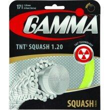 Besaitung mit Gamma TNT²