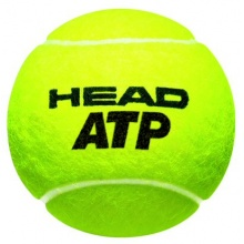 Head ATP GOLDEN BALL 2016 Tennisbälle 2x4er