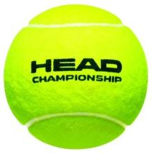 Head Championship Tennisbälle 36x4er Dose im Karton