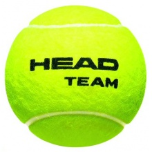 Head Team Tennisbälle 36x4er Karton