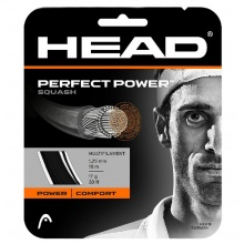 Head Perfect Power 1.30 schwarz Squashsaite