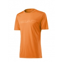 Head Tshirt Vision Corpo 2017 orange Herren