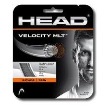 Head Velocity MLT schwarz Tennissaite