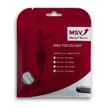 MSV Focus Hex weiss Tennissaite