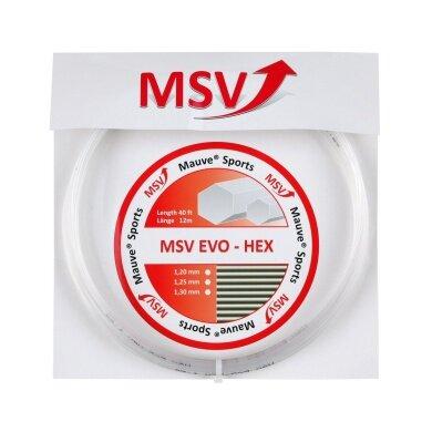 MSV Evo Hex chrystal Tennissaite