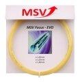 MSV Focus Evo natur Tennissaite