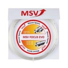MSV Focus Evo chrystal Tennissaite