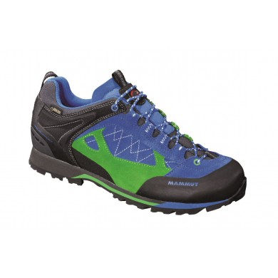 Mammut Ridge Low GTX imperial/dark spring Outdoorschuhe Herren