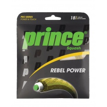 Besaitung mit Prince Rebel Power