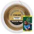 Signum Pro Firestorm gold 200 Meter Rolle