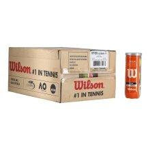 Wilson Tour Clay Tennisbälle 24x3er Karton