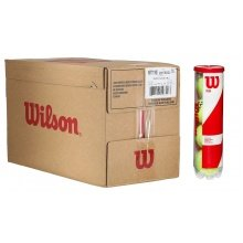 Wilson Team W Practice Tennisbälle 18x4er Karton