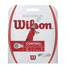 Wilson Reaction 70 Badmintonsaite