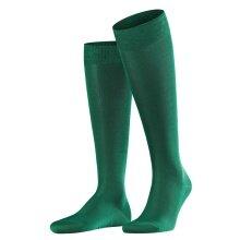 Falke Tagessocke Knie Tiago grün 1er Herren