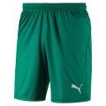 Puma Sporthose Short Liga Core kurz grün Herren