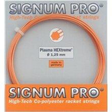 Besaitung mit Signum Pro Plasma Hextreme