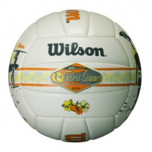 Wilson Volleyball Endless Summer